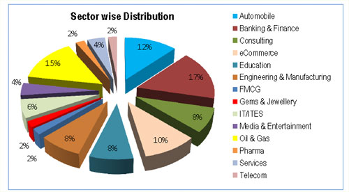 IIM Raipur Summer Internship Report 2012: Sector wise placements